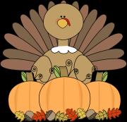 turkey-and-pumpkins