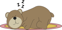 bear-sleeping-on-rug